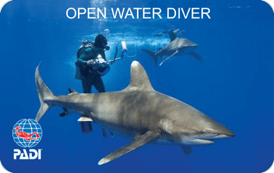 PADI Open Water Diver Certification Card