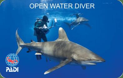 PADI Open Water Diver Certification Card