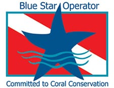 Florida Keys Blue Star Operator - Committed to Coral Conservation