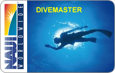 NAUI Divemaster Certification Card
