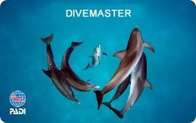 PADI Divemaster Certification Card